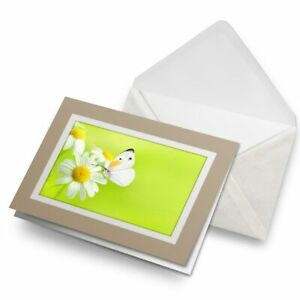 Greetings-Card-Biege-White-Butterfly-and-Daisies-2628