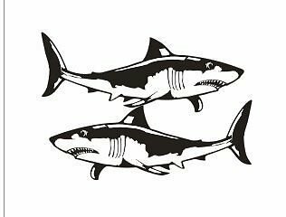 Pair of Shark Stickers 500 x 200 each sticker