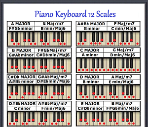 Image Is Loading Piano Keyboard 12 Scales Chart Every Note For