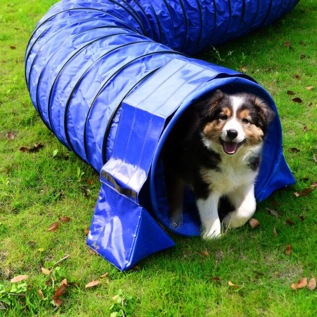 PawHut PVC Pet Tunnel Dog Agility Exercise Sand Bags Holder Fixation Run Play