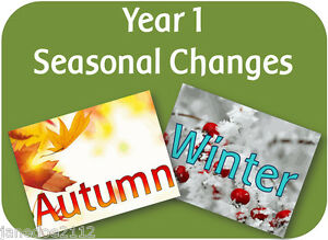Image result for seasonal changes year 1