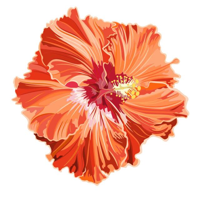 15 cm - PREMIUM Autoaufkleber Hibiskus Blumen Blüten Aufkleber Sticker Auto LKW