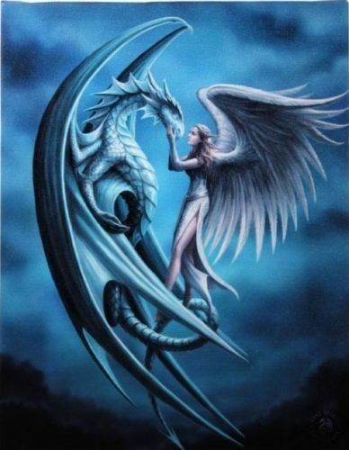SILVER BACK DRAGON CANVAS PICTURE ART PRINT ANNE STOKES GOTH FANTASY ANGEL GIFT