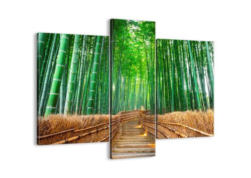 IMAGE SUR TOILE Cadre bambou plante 3979 FR