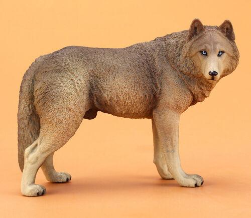 1:6 Wolf Beige PVC Model Painted Figurine Statue Simulation Miniature Animal Toy