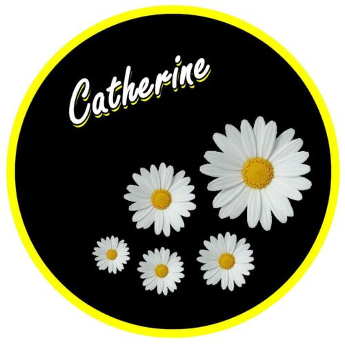 BLACK /& DAISY PERSONALISED CAR TAX DISC HOLDER YELLOW NAME REUSABLE NEW