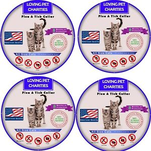 4-Pack-Flea-And-Tick-Collar-For-Cats-8-Months-Protection-One-Size-Fits-All