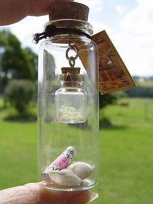 1 x GLASS WISHING BOTTLE WITH AMULETS & SMALL BOTTLE Wicca Pagan Witch Goth