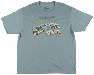 Bruce-Springsteen-Greetings-from-Asbury-Park-T-Shirt-Mens-Heather-Turquoise