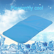 Multifunction Cooling Blue Pillow Cold Therapy Insert Sleeping Aid Pad Mat ZM