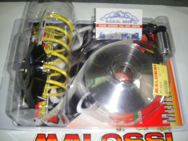CAMBIADOR MALOSSI 2000 SYM EURO MX 125 4T 5114273