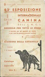 42-Esposizione-Canina-Torino-1938-Cani-da-Caccia-e-Collies-E-N-C-I