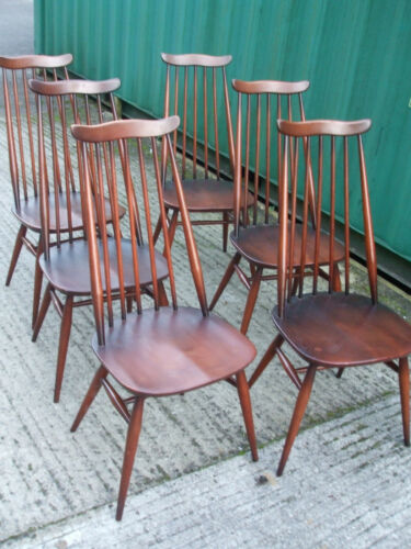 Set of six vintage Ercol Goldsmith chairs, original 1960s blue label, well loved