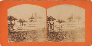 BRESIL-Amerique-du-Sud-Tropiques-Photo-Stereo-Vintage-Albumine-ca-1870