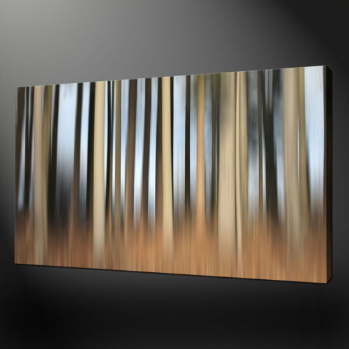 """ABSTRACT BIRCH BROWN FOREST MODERN DESIGN PHOTO CANVAS PRINT 20/""""x16/"""" FREE UK P/&P"""