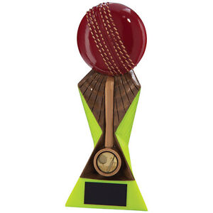 170mm-034-Flash-034-Cricket-Trophy-Award-RRP-10-50-engraved-and-postage-free