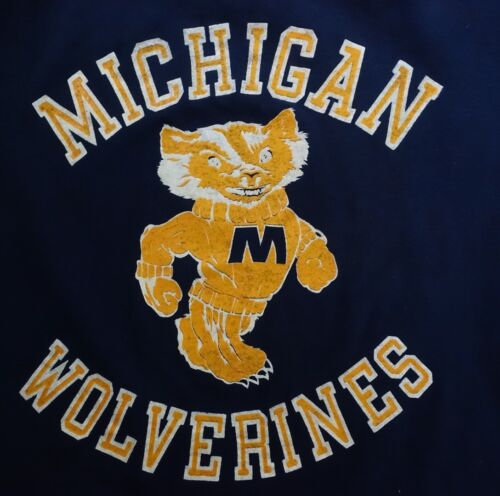 Rare Vintage 60's Michigan Wolverines T-shirt Russ