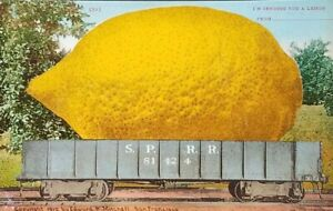 Exaggerated-Lemon-Railcar-Edward-H-Mitchell-Fruit-Train-1893-Postcard-1910