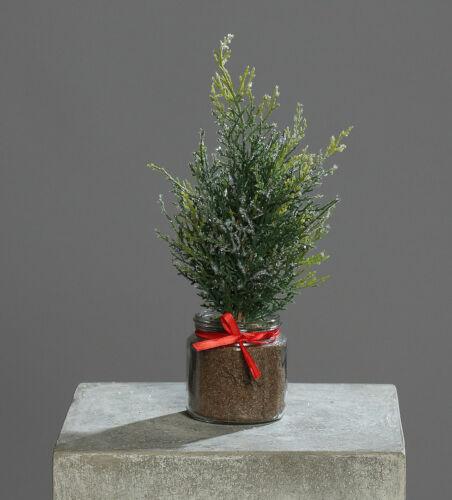 Zeder Konifere 30cm im Glastopf DP künstlicher Baum Zeder Thuja Kunstpflanzen