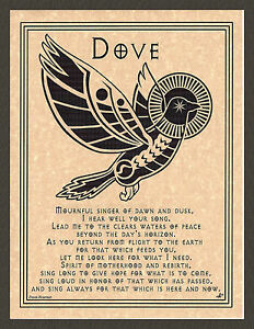 DOVE-Prayer-Bird-Shaman-Animal-Spirit-Poster-Page-Native-Am-Celtic-Wicca