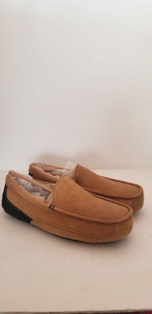d5987201904 UGG Mens Ascot Chestnut / Navy Suede SLIPPER Shoe Size 12 US RARE Color