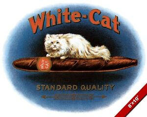 Vintage White Cat Cigar Advertisement Old Ad Poster Art Real Canvas Print Ebay