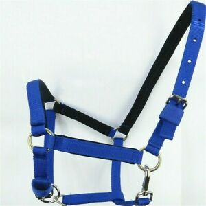 New Padded Nylon Horse Halter// Headcollar with matching Cotton Leadrope