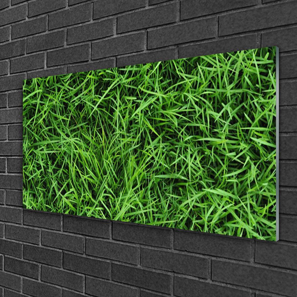 Tableau sur verre Image Impression 100x50 Floral Herbe Pelouse