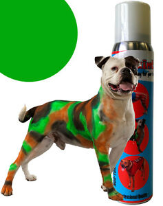 PetPaint Pet Dog Paint Color Spray Safe for Dogs Greyhound Green