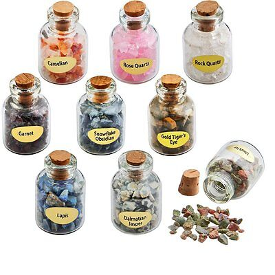 9 Bottles Chip Loose Stone Crystal Healing Tumbled Mini Gemstone Reiki Wicca Set