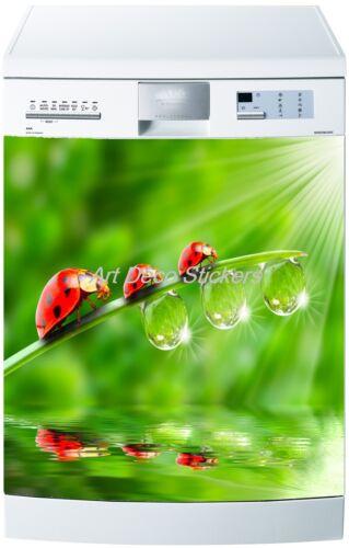 Aufkleber Geschirrspülmaschine Deko Haushaltsgeräte Marienkäfer Ref 242 60x60cm