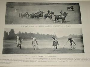 1896 Real Caballo Artillería Scots Greys Tienda Fijación Etc