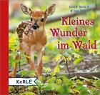 Kleines Wunder im Wald von Carl R. Sams II. und Jean Stoick (2014, Gebundene Ausgabe)