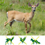 thumbnail 2 - Feitore Deer Fence Netting, 7 x 100 Feet Bird Netting Anti Black