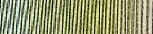 2341 Junges Gemüse Schoppel Zauberball® Cotton Bio Baumwolle 100g Fb