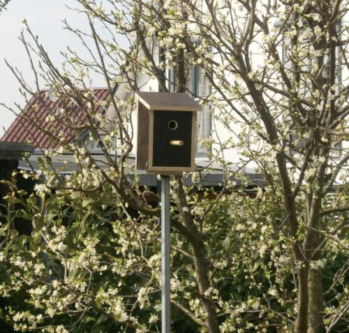 Nistkasten Meisenkasten Starenkasten Vogelhaus Sperlingskasten Vogelfutterhaus