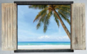 Window-View-Palm-Tree-Beach-Paradise-Sticker-Wall-Decor-PosterVinyl-3D-FREE-SHIP