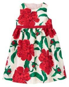 GYMBOREE-JOYFUL-HOLIDAY-ROSE-DUPPIONI-DRESSY-DRESS-3-6-12-18-24-2T-3T-NWT