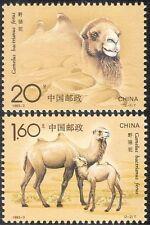 China 1993 Bactrian Camels/Animals/Nature/Wildlife/Transport 2v set (s1505)
