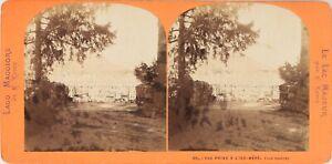 Italia Piemonte Lac Maggiore Île-mère Foto Lamy, Stereo Vintage Albumina Ca 1870