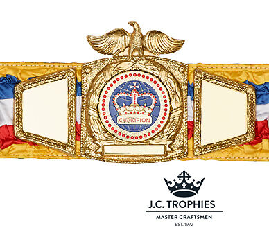 SILK CHAMPIONSHIP TITLE BELT - OTHER SPORTS & COLOURS COLOURS & AVAILABLE 329f32