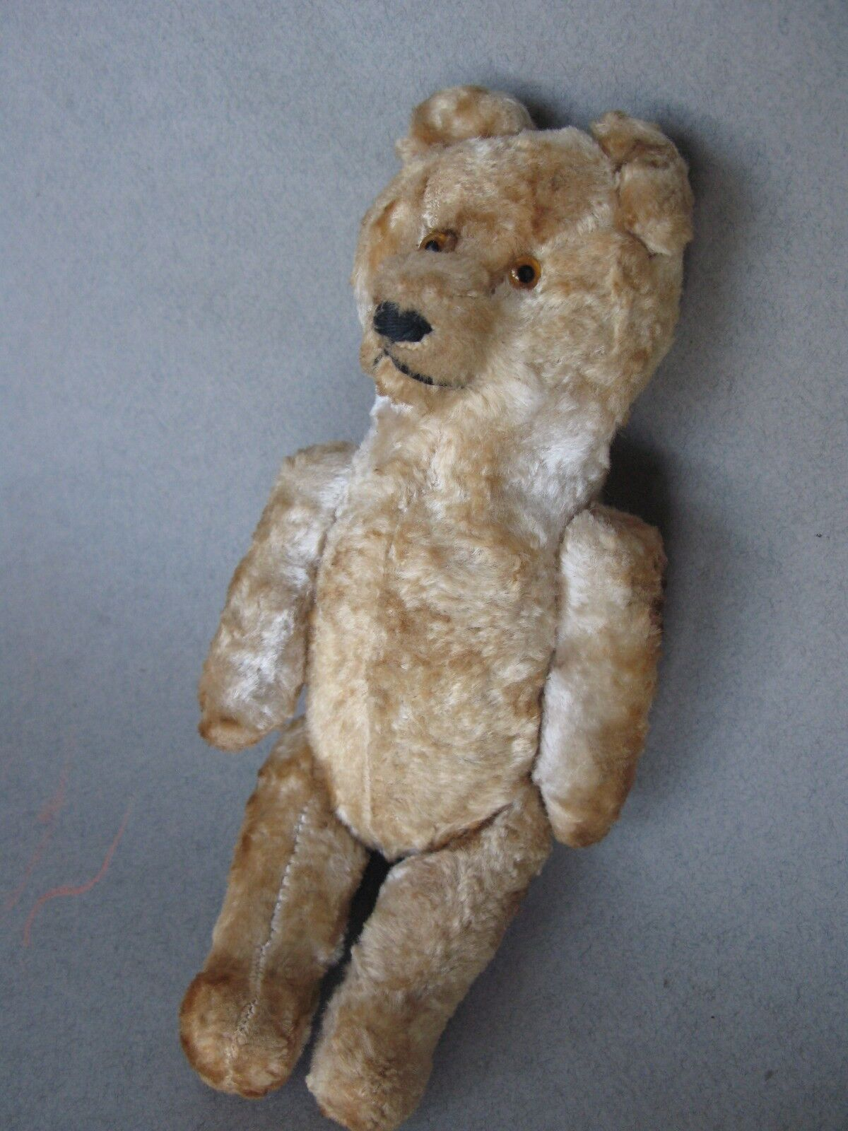 ANTIQUE (EARLY 20th CENTURY)  BEAR STEIFF  Größe 20CM 7.87IN
