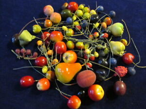 """Vintage Millinery Flower Fruit & Berry Collection w/Acorn 3/8-2"""" German H3547"""