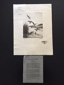 Vintage-1944-Richard-E-Bishop-Reproduction-Print-034-Settin-039-Down-034