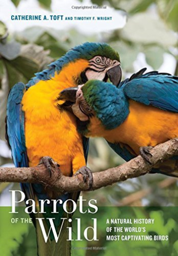 Toft Catherine A./ Wright T...-Parrots Of The Wild HBOOK NEUF
