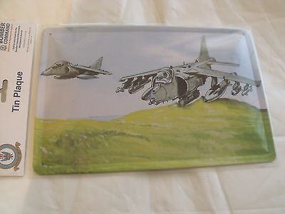 HARRIER JUMP JET Silver Commemorative Royal Air Force RAF British Aerospace