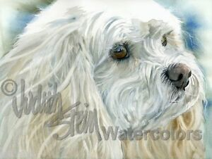 Airedale Terrier Dog Art Print of Watercolor Painting Artist Judith Stein Signed
