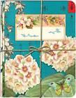 Cartolina by NOTEBOOK (Paperback)