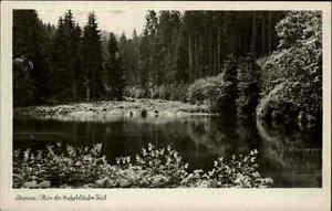 Ilmenau-Thueringen-1958-DDR-Partie-Knoepfelstaler-Teich-Gewaesser-Landschaft-Wald