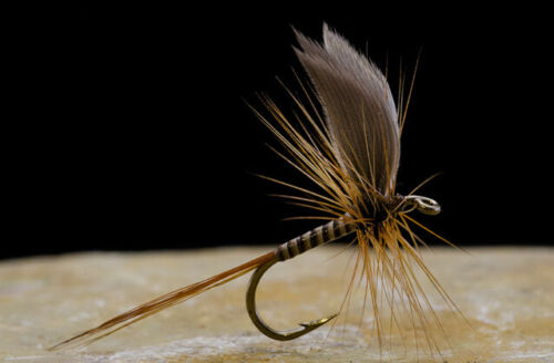 Now You Create The Most Amazing Flies Fly Tying Quills